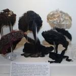 Thoolse Streekdracht met sluiermuts van tule en Rijsselse kloskant mutsen